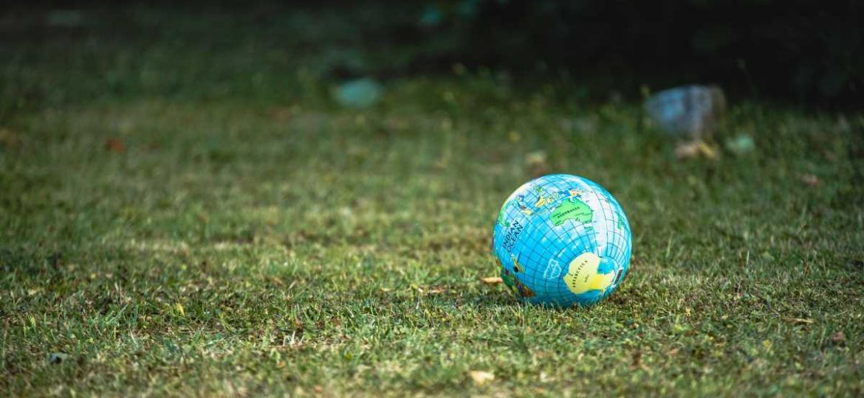 ecologia ambientalismo