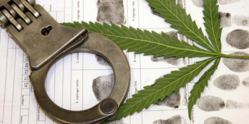 Cannabis_Proibizionismo_Criminalita_Corruzione