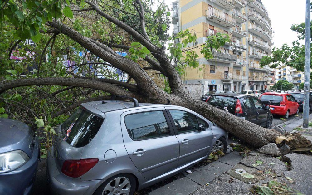 alberi-caduti-maltempo-napoli-fotogramma