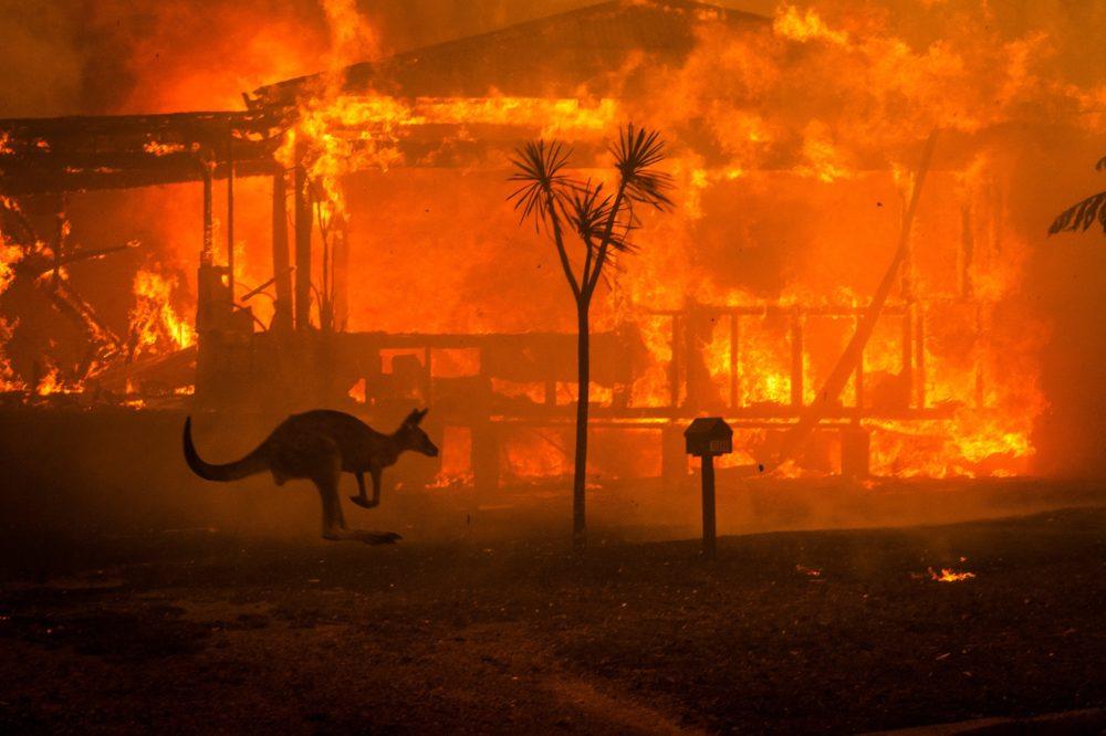 australia-incendi