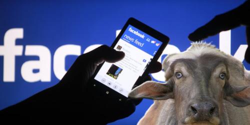 bufale-facebook