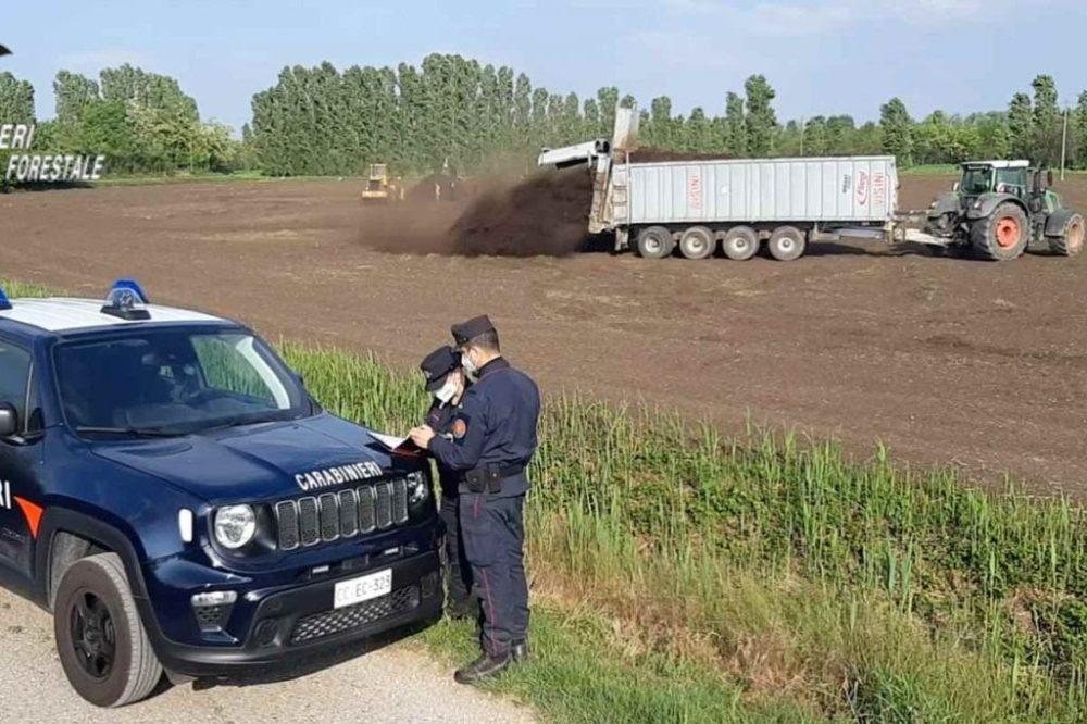 carabinieri_tutela_forestale-1024x683-1