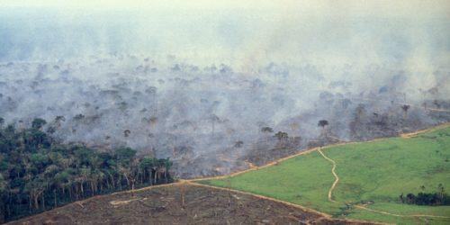 deforestazione-amazzonia2
