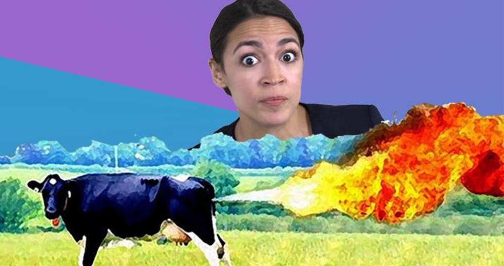 farting-cows-aoc