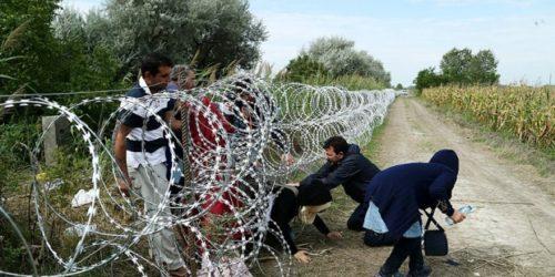 migranti-serbia-1-620x430
